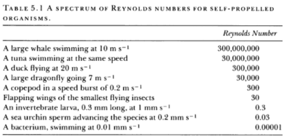 Table of Reynolds Numbers